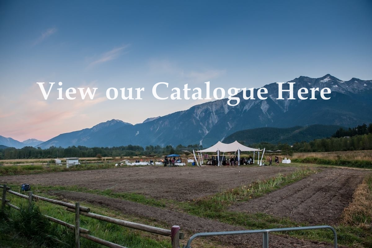 View Catalogue